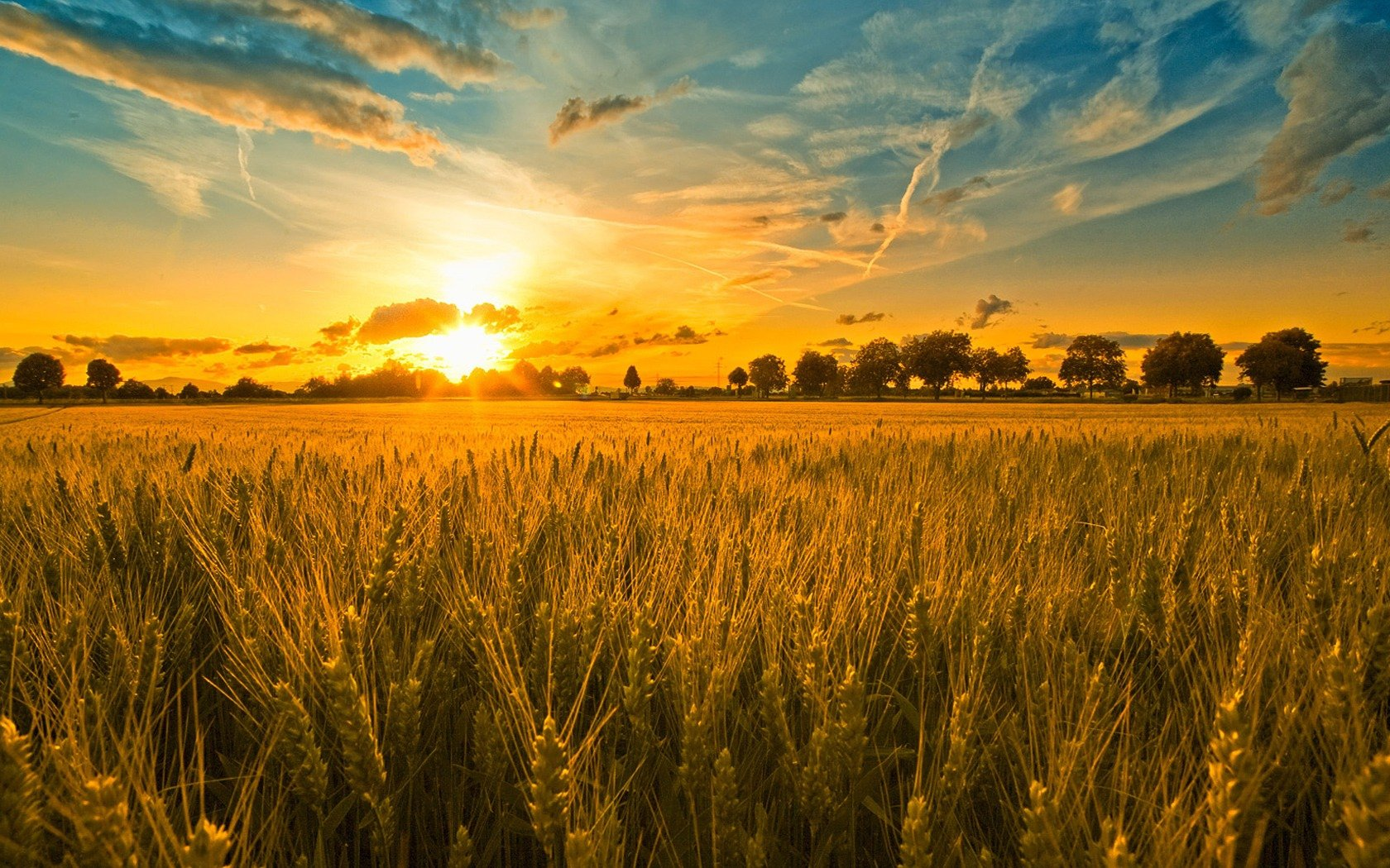 Harvest Songs of Praise- Sunday 4th October, 3pm